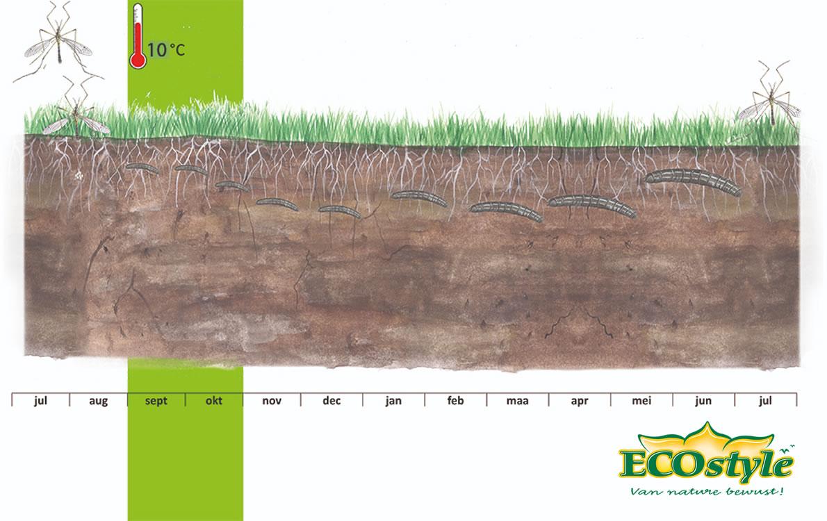 Emelten3 • Gras en Groen Winkel