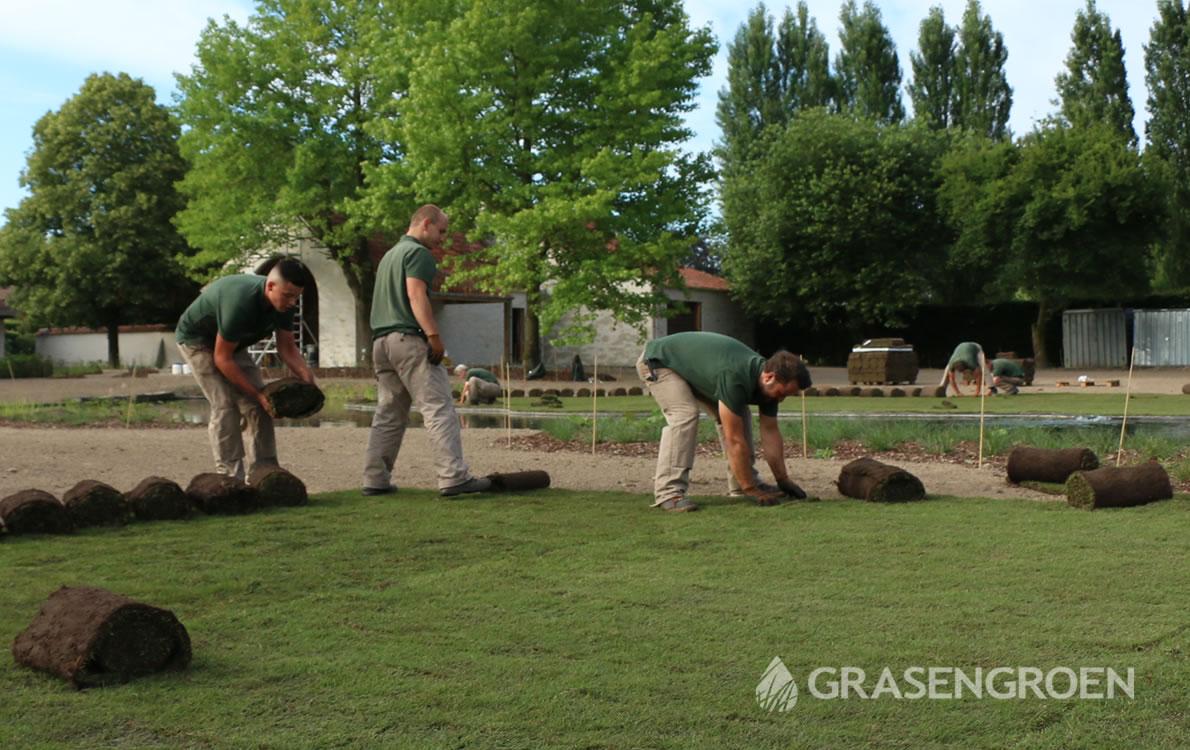 Graszodenleggen2 • Gras en Groen Winkel