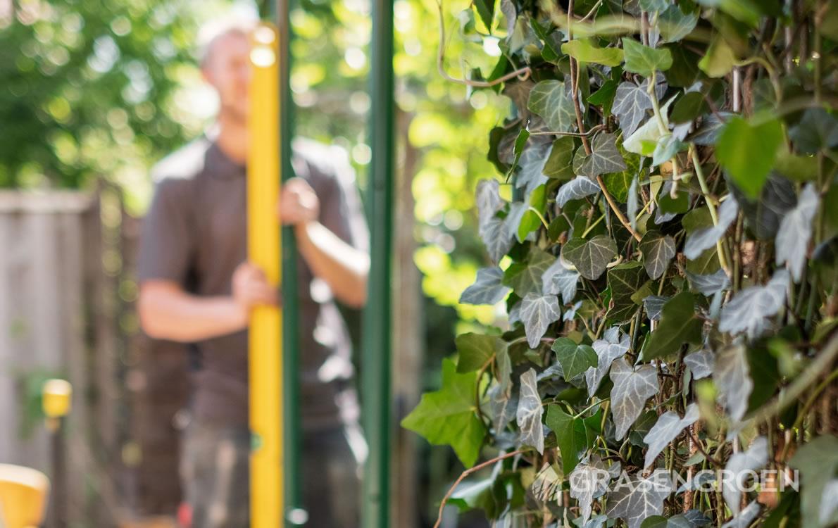 Zelfkantenklaarhaagaanplanten3 • Gras en Groen Winkel