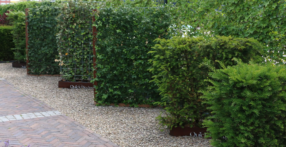 Kantenklaarhaagkiezen • Gras en Groen Winkel