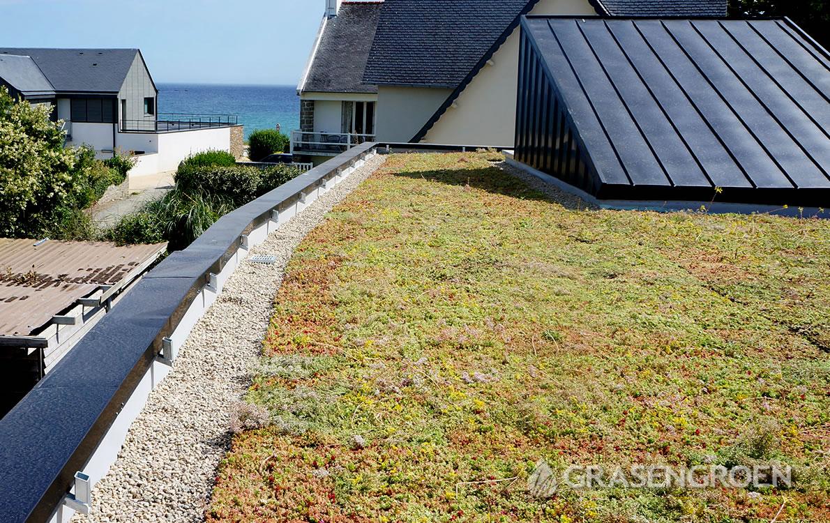 Keuzegroendak1 • Gras en Groen Winkel