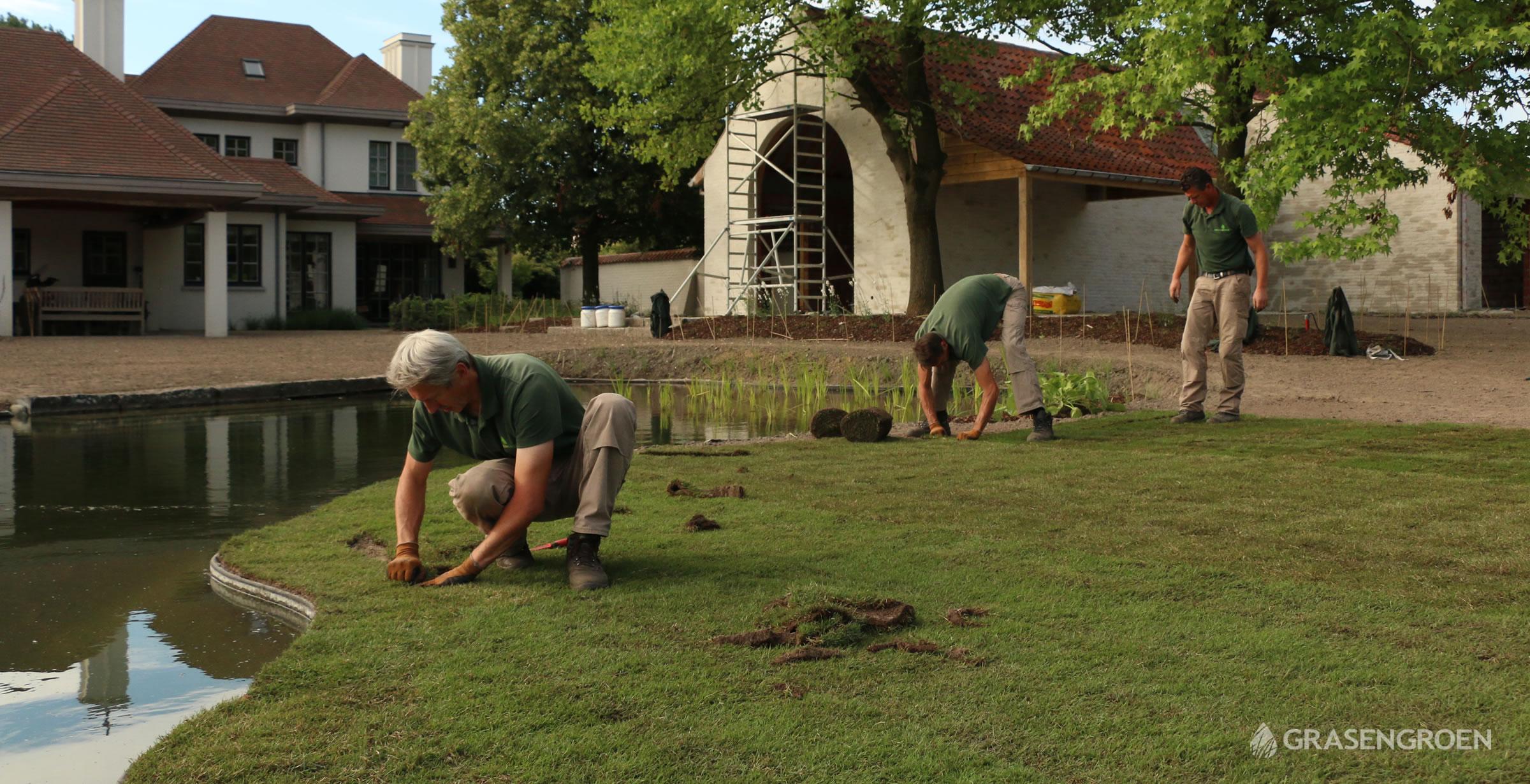 Graszodenlatenleggen4 • Gras en Groen Winkel