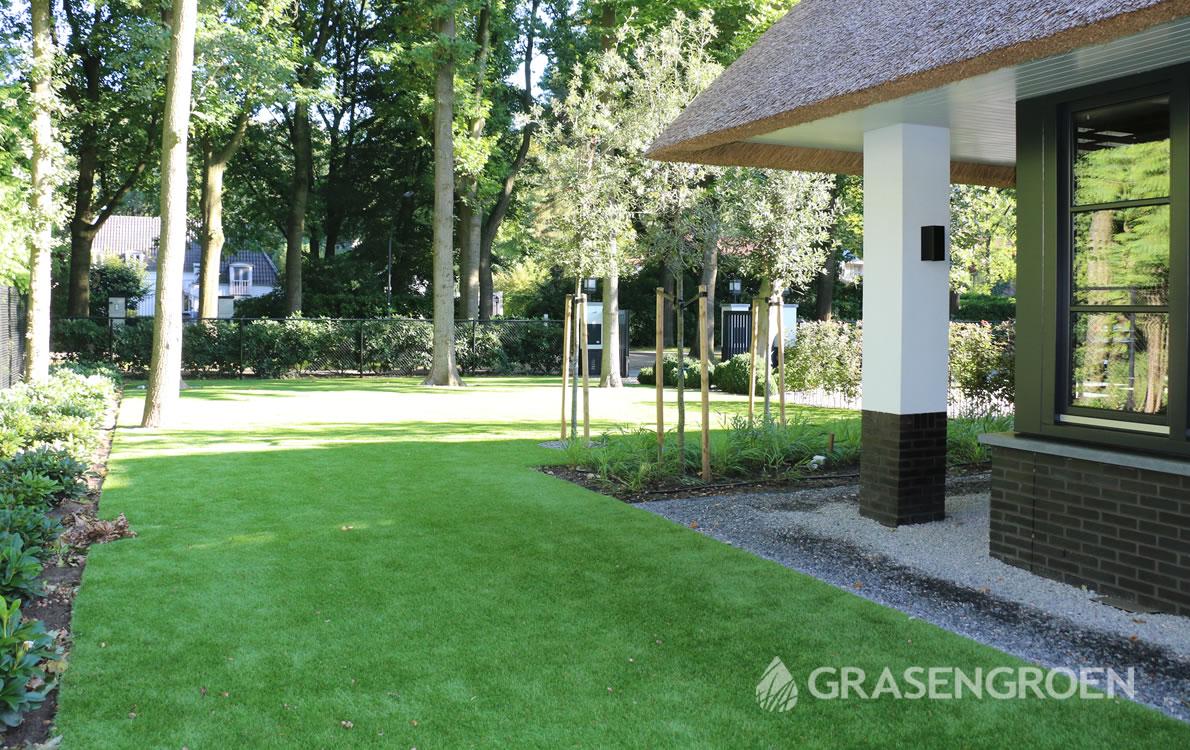 Overgrasengroen2 • Gras en Groen Winkel