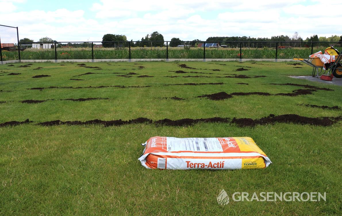 Herstelgazonvoorjaar6 • Gras en Groen Winkel