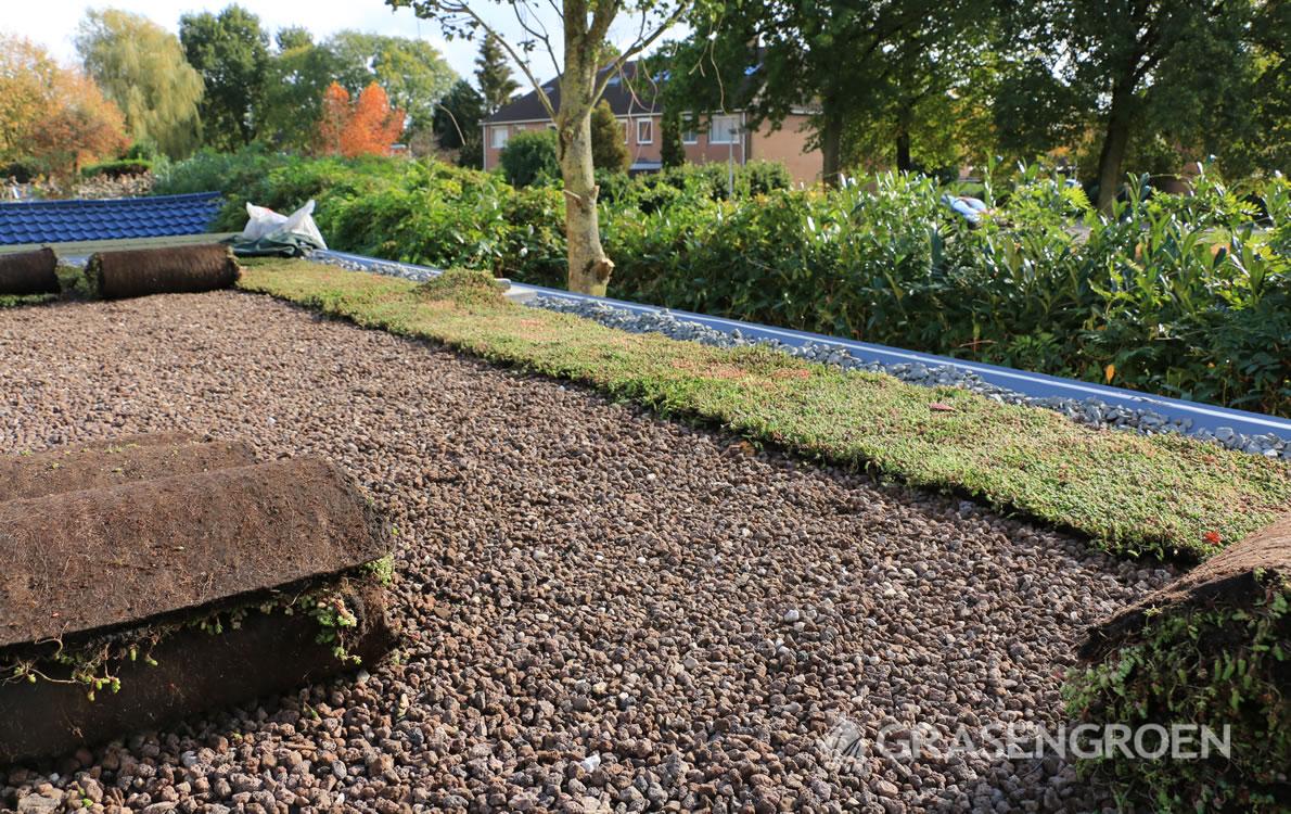 Zelfgroendakaanleggen1 • Gras en Groen Winkel