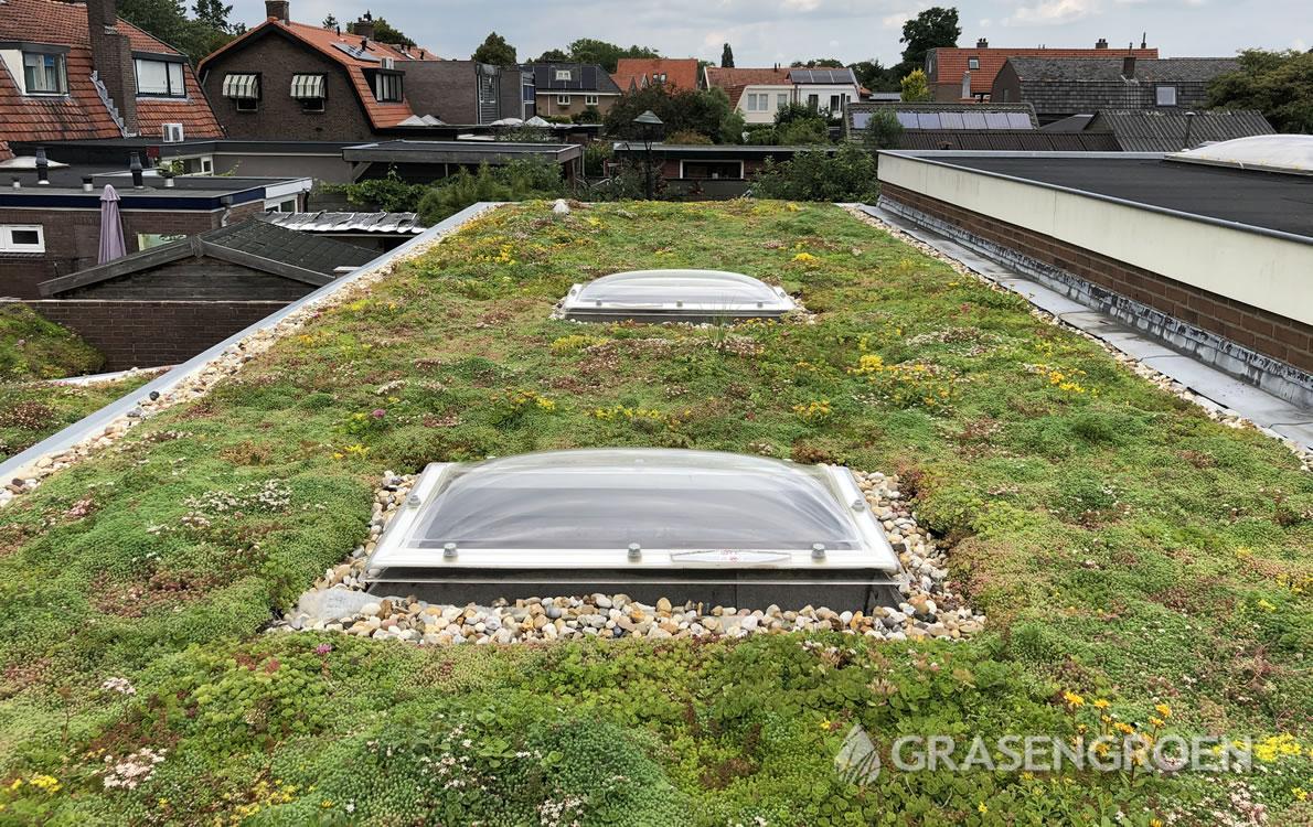 Zelfgroendakaanleggen2 • Gras en Groen Winkel